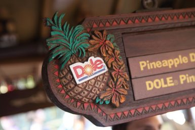 Disneyland Dole Whip Recipe